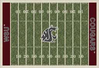 Washington State Cougars College Football Field Rug