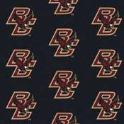 Boston Eagles College Team Logo Rug